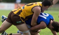 Round 14: Box Hill Hawks Development Side vs Werribee