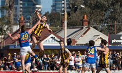 Hawks Claw out Seagulls in Epic Preliminary Final