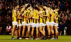 Match information: Footscray v Box Hill Hawks
