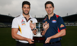 Box Hill Hawks v Footscray Bulldogs Grand Final Preview