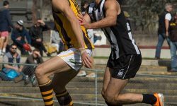 Hawks 11 points short as Magpies swoop win