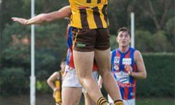 Preliminary Final Preview – Box Hill Aiming For Nine Straight