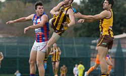 Qualifying final preview – Port Melbourne v Box Hill