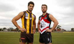 Box Hill Hawks vs Frankston Preview