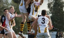 Hawks' Wings Clipped by Bold Bombers