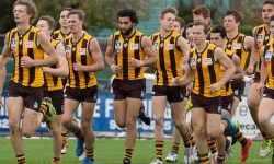 Dimasi: Powerful Addition To The Hawks