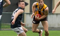 DEV: Hawks too slippery for Northern Blues