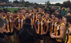 Seniors: Hawks claim victory in the final seconds against North Ballarat