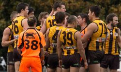 Teams: Round 14 v Coburg