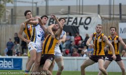 Box Hill Through To Grand Final