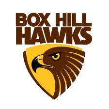 hawks logo large_96313
