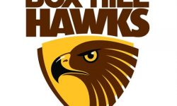 Box Hill Hawks Declaration of Election Results Season 2016