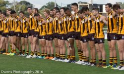 Dominant Round 1 Win for Senior Box Hill Side