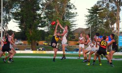 Development Squad Triumphant Over the Werribee Tigers