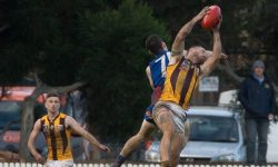 Port Melbourne Prove Too Strong For The Hawks