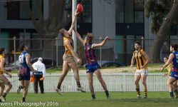 34-Point loss to Port Melbourne: Development Match Report