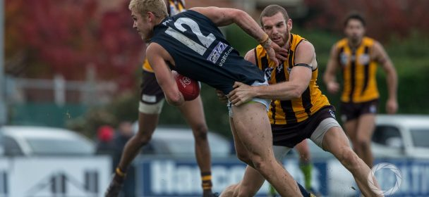 Northern Blues Too Strong For Hawks