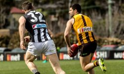 Seniors' Finals Hopes Dashed by Pies
