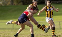 MATCH REPORT: Darebin too strong for Hawks