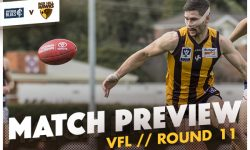 MATCH PREVIEW: VFL Round 11