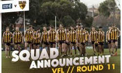 TEAMS: VFL Round 11