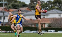 MATCH REPORT: Seagulls down Hawks