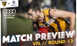 MATCH PREVIEW: VFL Round 12