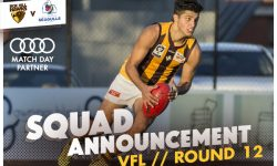 TEAMS – VFL Round 12