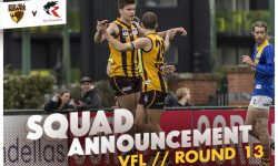 TEAMS: VFL Round 13