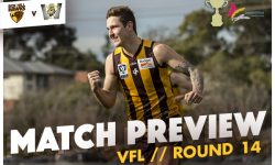 MATCH PREVIEW: VFL Round 14