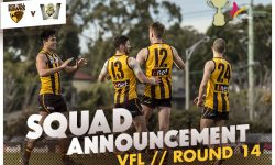 TEAMS: VFL Round 14