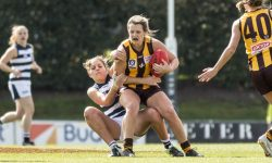 MATCH REPORT: Hawks Clawed By Cats