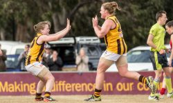 VFLW MATCH REPORT: Dogged Hawks Fight to the Death