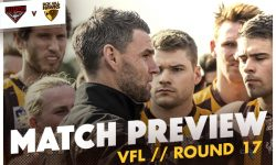 VFL – Round 17 Match Preview