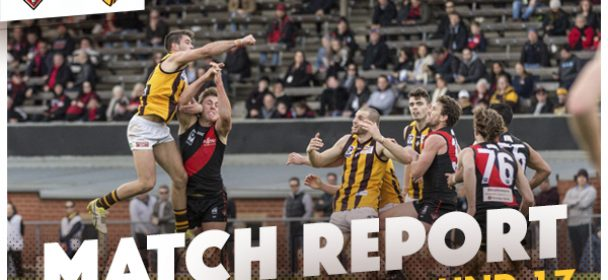 VFL MATCH REPORT: Dons Stun Hawks