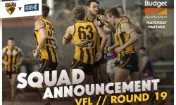 VFL: Round 19 Teams