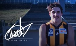 Tweedie Joins Hawks