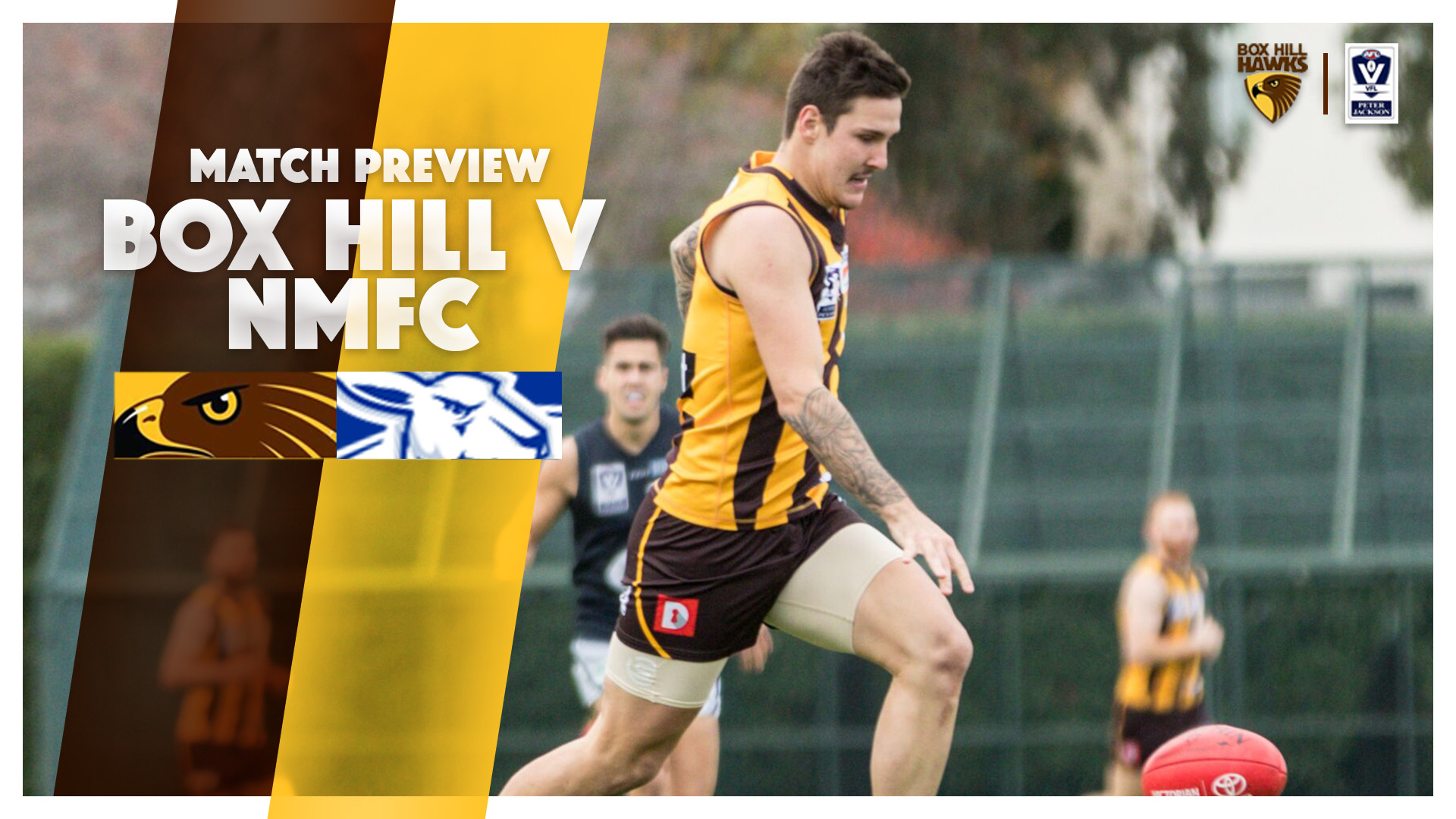 Round Eight Match Preview | Box Hill Hawks