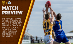 Preliminary Final Match Preview