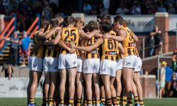 Hawks out to retain ANZAC cup