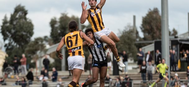 ROUND 8 Match Report: Hawks fall short