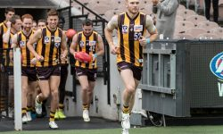 AFL Mid-Season Draft Nominees