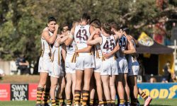 ROUND 8 Preview: Hawks to take flight