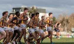 ROUND 9 Preview: City Oval Blockbuster