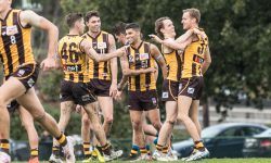 R12 Match Report: Hawks reign supreme in wet