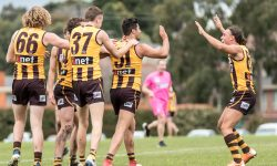 R20 Match Report: Hawks keep finals hopes alive