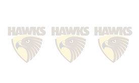Box Hill Hawks Football Club Limited – 58th Annual Report 2008
