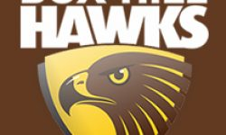 Port Melbourne inflict Hawks first loss