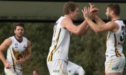 Casey Scorpions stung by High-Flying Hawks
