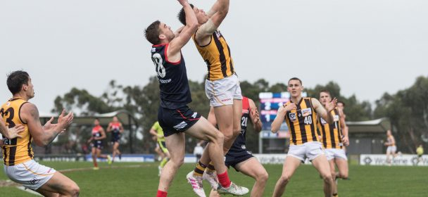 R13 Match report: Hawks outhunted by Demons